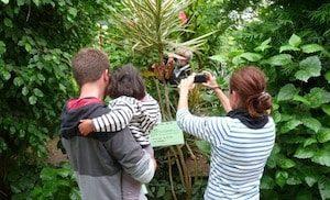 L'île aux papillons de Noirmoutier - sortie famille (85)